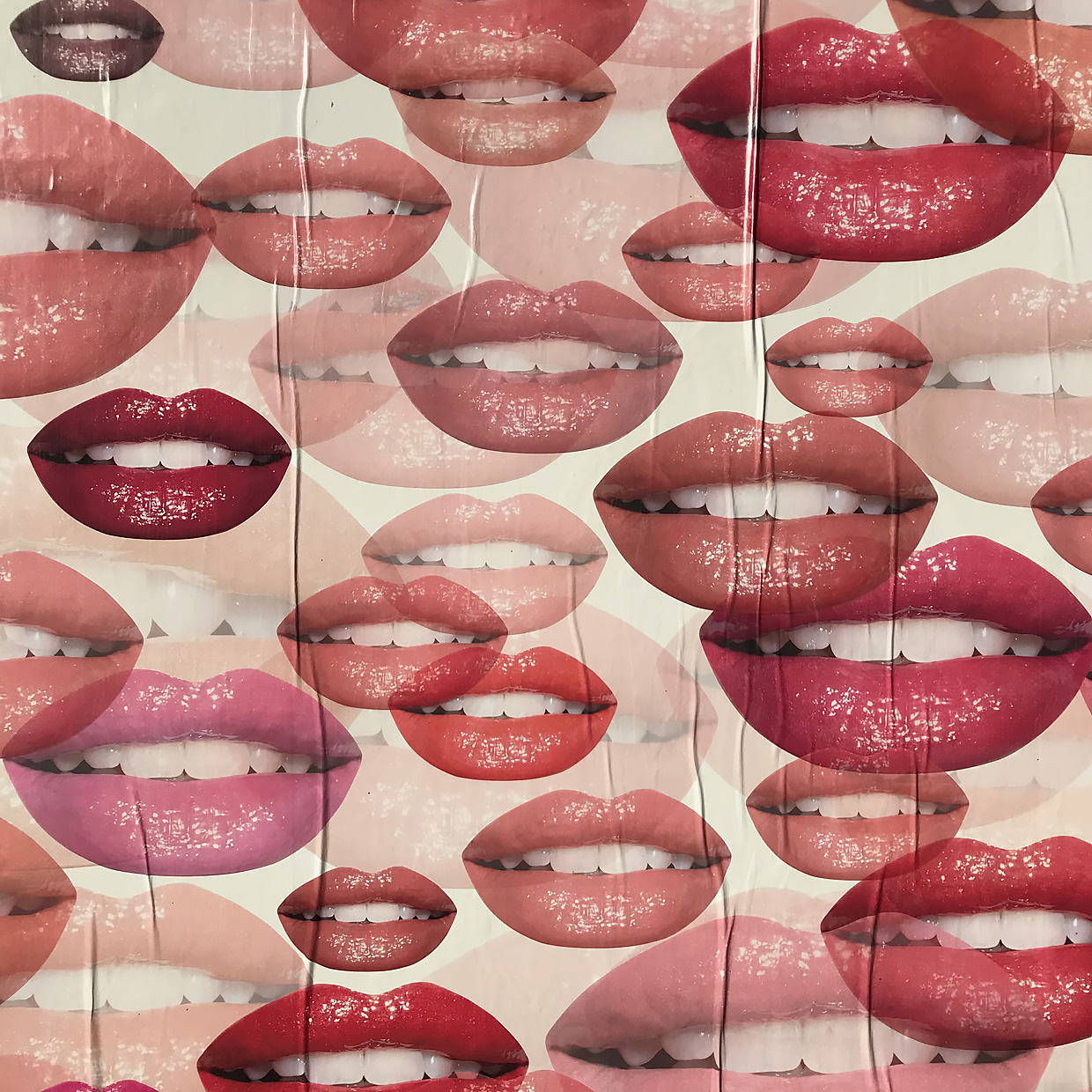 Multiple lips